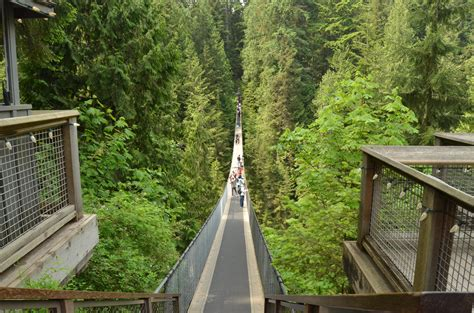 Vancouver Capilano Suspension Bridge Park Fisher