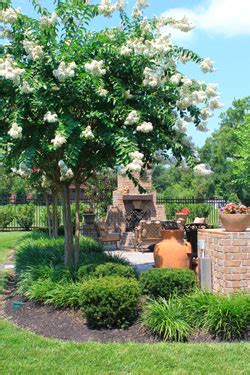 garden nurseries in franklin tn thenurseries