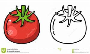 Colorful And Black And White Tomato For Coloring Book ...