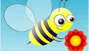 Welche Blumen Für Bienen : deine balkonblumen retter f r bienen und hummeln gaias kinder ~ Eleganceandgraceweddings.com Haus und Dekorationen