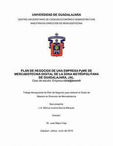 Pdf  Plan De Negocios De Una Empresa Pyme De