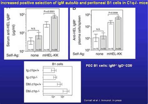 Iga Resume Sle by 100 Anti C1q Antibodies Concentrations By Systemic Lupus Erythematosis U0026 Kawasaki