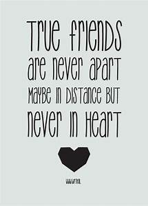 Top 20 Cute Friendship Quotes | Friendship quotes ...