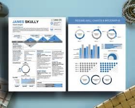 infographic resume skills chart infographic milennial