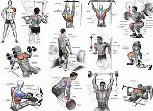 Top Muscle Building Workouts For Men