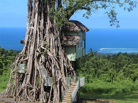 decoration chambre hotel luxe des maisons dans les arbres incroyables