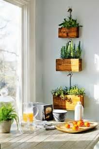 decorar con plantas de interior decoración de interiores y exteriores estiloydeco