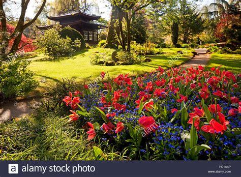 Japanischer Garten Leverkusen Teehaus by Azalee Azalea Spec Japanischer Garten Leverkusen Mit
