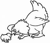 Chicken Coloring Template Pages Printable Templates Animal Colouring Print Delicate Cartoon Sheets Chook Crafts sketch template