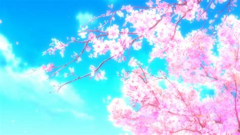 Anime Tree Wallpaper - anime nature tree cherry blossom