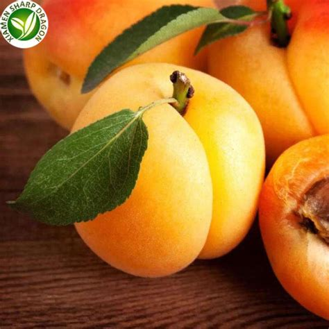 Apricot Fruit Buy Online Suppliers and Manufacturers ...