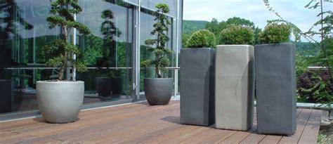 pflanzen und palmen fuer die terrasse p objekt gruen