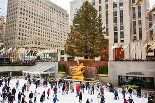 the 2016 rockefeller center christmas tree has arrived in midtown curbed ny