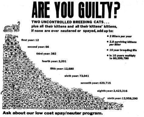 Cat Population Growth > Spay Neuter Your Pet (snyp