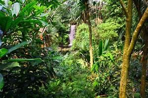 Masoala National Park Travel Guide: Eyes Of The Forest