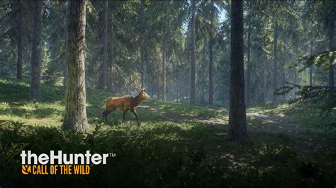 hunter call   wild deer video games murder