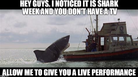 Nice Boat Meme - jaws the helpful thespian imgflip