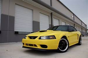 The Biggest Build 99-04 V6 - The Mustang Source
