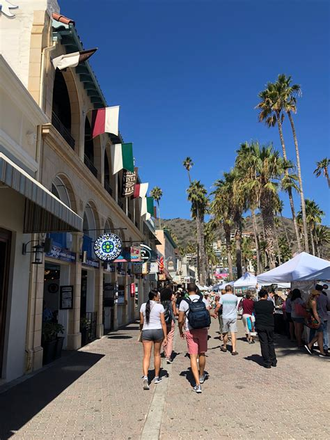 Catalina Day Trip- The Best Things to Do in Catalina ...