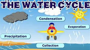the water cycle surfnetkids