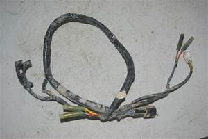 Kawasaki Klx 300r Klx 250r Electrical Wiring Wire Harness