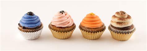 ms cupcake cupcakes