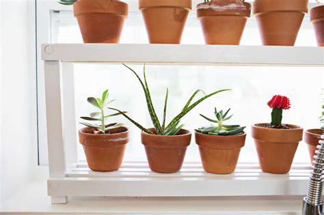 Window Ledge Plant Shelf