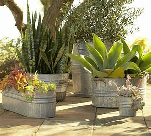 Galvanized Metal Tubs, Buckets, & Pails as Planters
