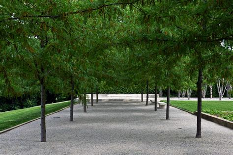 miller garden the landscape architecture legacy of dan kiley the cultural landscape foundation