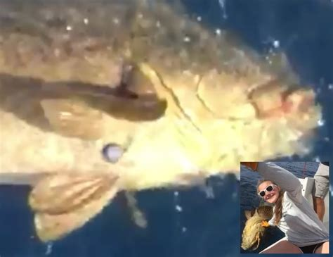 pound grouper saltwater fishing she abby fortunate workout arms kelly wednesday did much need odumagazine