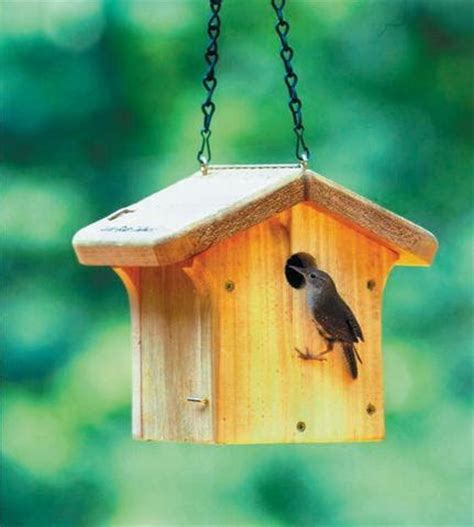 wild birds unlimited do you need to clean out bird houses