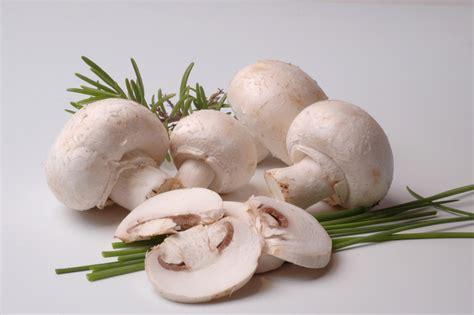 recette de cuisine viande chignon de