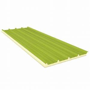 Roofing panels agro fiberglass 50 mm plytacmbpl for Fiberglass roof panels