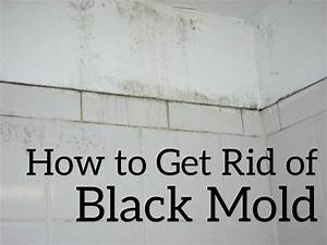 how to treat mold in bathroom 28 images how to treat With how to treat mold in bathroom