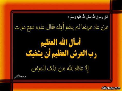 daaa alshfa desertrose adaayoaabrkraany art