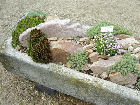 gardenless gardener rock garden ideas
