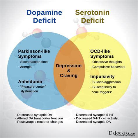 serotonin levels drjockerscom