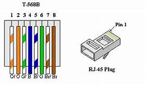 Cat 5 Wiring Diagram : cat5 network cable wiring diagram ws it troubleshooting ~ A.2002-acura-tl-radio.info Haus und Dekorationen