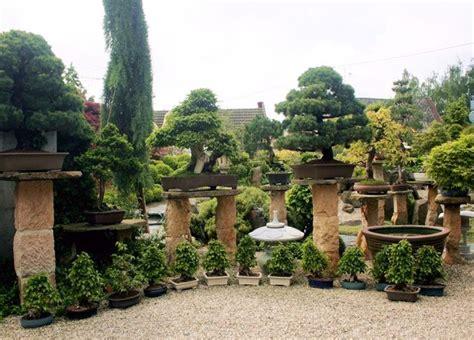 japanese garden bonsai bonsai garden japanese garden bonsai garden pinterest