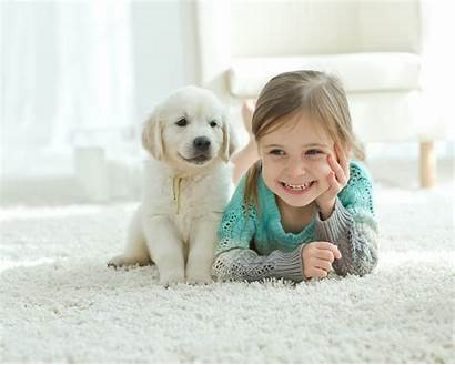 Pets Children Animals Reasons Toys Movies Obvious