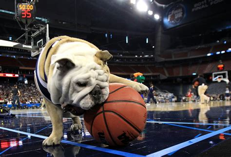 march madness ncaa rule bans butler bulldog  ncaa