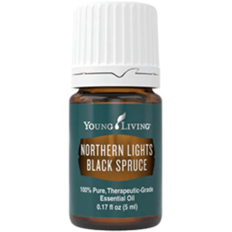 northern lights black spruce essential oil young living northern lights black spruce essential oil