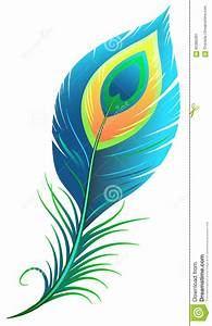 Peacock Feather Stock Vector - Image: 62385391