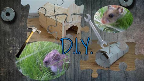 diy guinea pig house bonus project  hamsters youtube