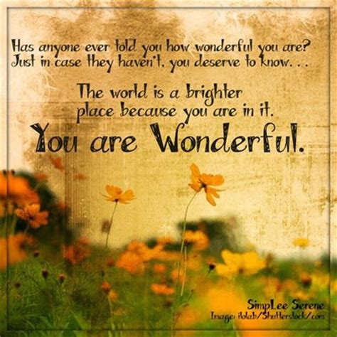 You Are A Wonderful Man Quotes