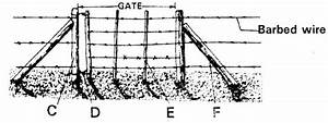Kcse 2007 Agriculture Paper 2  Question 22 A   Barbed Wire