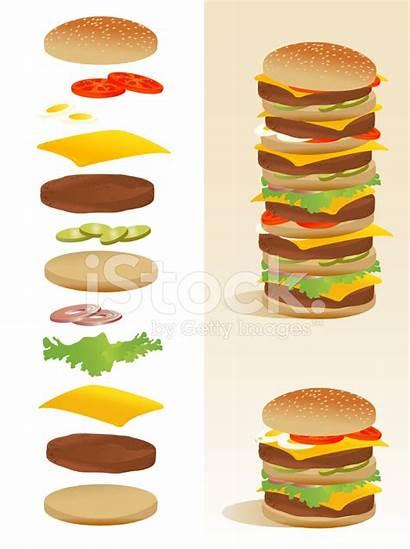 Burger Ingredients Clipart Deconstruction Hamburger Separated Vector