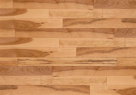 Interior: Maple Hardness   Kitchen Engineered Wood