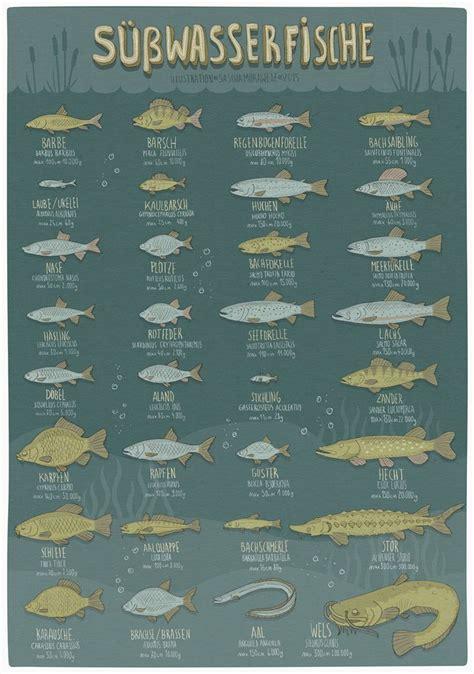 plakat poster infografik illustration von sascha