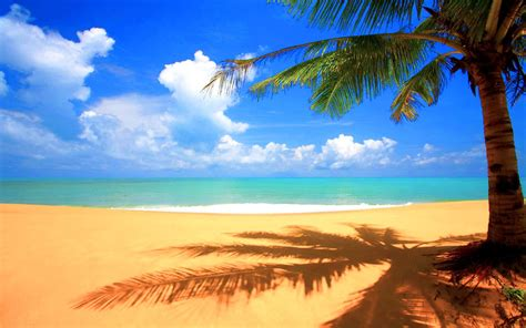 image  beautiful beach backgrounds high definition
